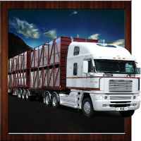 Offroad Truck Cargo Delivery Driving Simulator