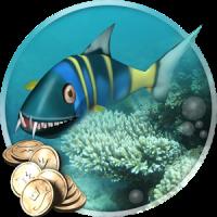 Aquarium & the Beasts
