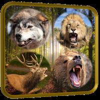 Wild Jungle Animal Sniper Hunt