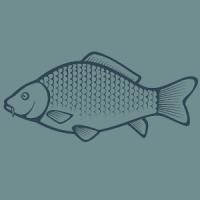 Carp Fishing Videos & Tips