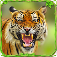 Furious Tiger Simulator