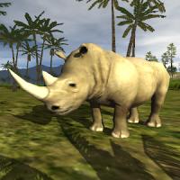 Rhino simulator 2019