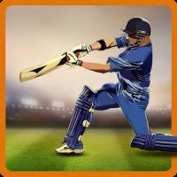 CricAstics 3D Multiplayer Cricket Game