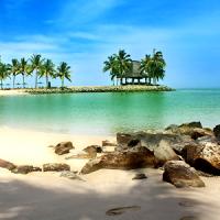 해변 라이브 배경 화면