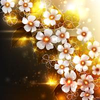 leuchtende Blume Wallpaper