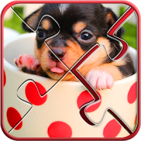 Cute Dogs Jigsaw Puzzle