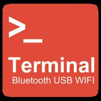 Bluetooth USB WIFI Terminal
