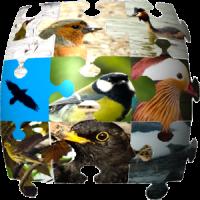 Ornithopedia Europe