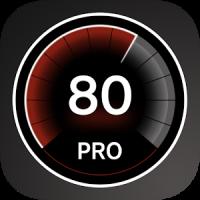 Speed View GPS Pro