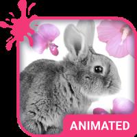 Cute Bunny Animated Keyboard