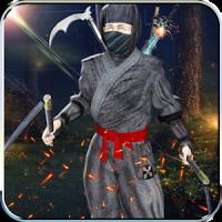 Ninja Fight Kung Fu Shadow Assassin Samurai Games