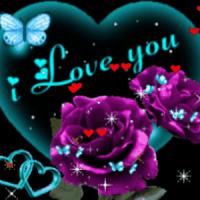 Purple Rose Blue Butterfly Liv