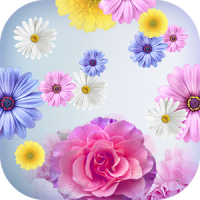 Moving Flowers Wallpaper Live