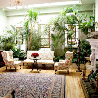 Indoor Garden Room Ideas