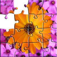 Jigsaw Puzzle Nature & Photo puzzle