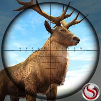 Animal Hunting Sniper Shooting Game 2020