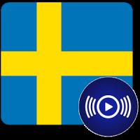 SE Radio - Swedish Online Radios