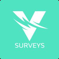 Voyage Surveys