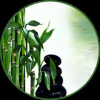 Zen Bowls