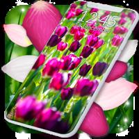 Spring Petals Live Wallpaper ❤️ Flower Wallpapers