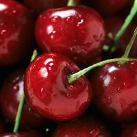 Berries Live Wallpaper