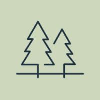 Min skog - skogsbruksplanen