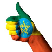 Ethiopian Arada፡ Taxi posts and amharic proverbs