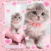 Pink Cute Kitty Cat Theme