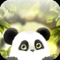 पांडा चूब लाइव वॉलपेपर मुफ्त
