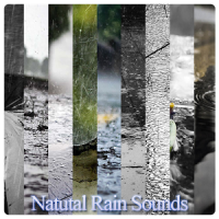 Natural Rain Sounds