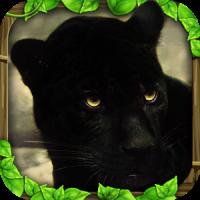 Panther Simulator