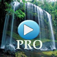 PRO Nature Sounds Limitless