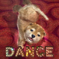 Animal Dance puppies