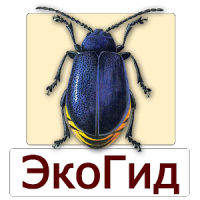 EcoGuide: Forest Insect Pests