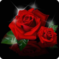 Flower Of Love Wallpaper