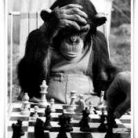 Elo Rating Chess