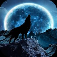 Blue Moon Wolf Live Wallpaper