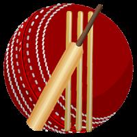 Cricket Language &Terminology